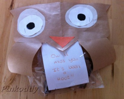 Home-made Owl Biscuit Bags Present