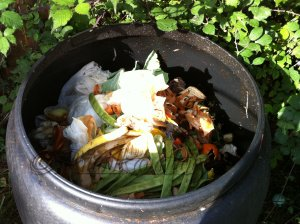 compost bin and contents
