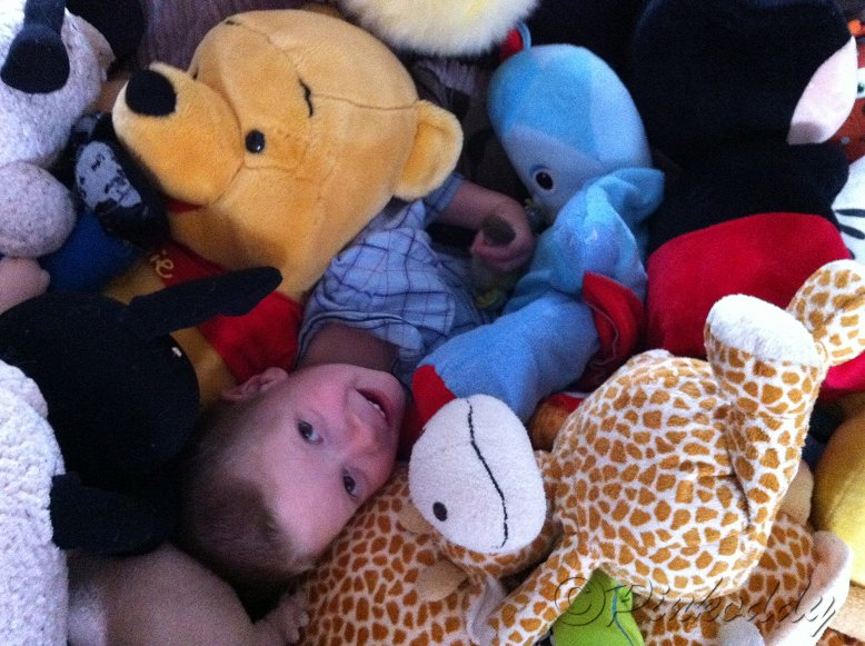Sensory Processing Disorder – Tactile Touch