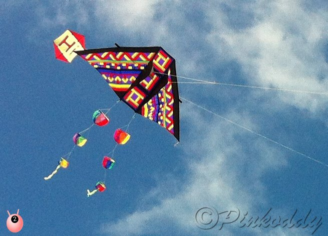 Let's go Fly a Kite – on the Beach