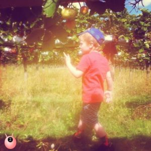 boy_and_fruit_tree
