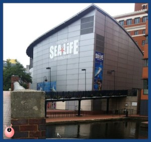Birmingham National Sea Life Centre Review