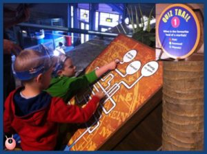 Quiz trail at Birmingham Sea Life Centre