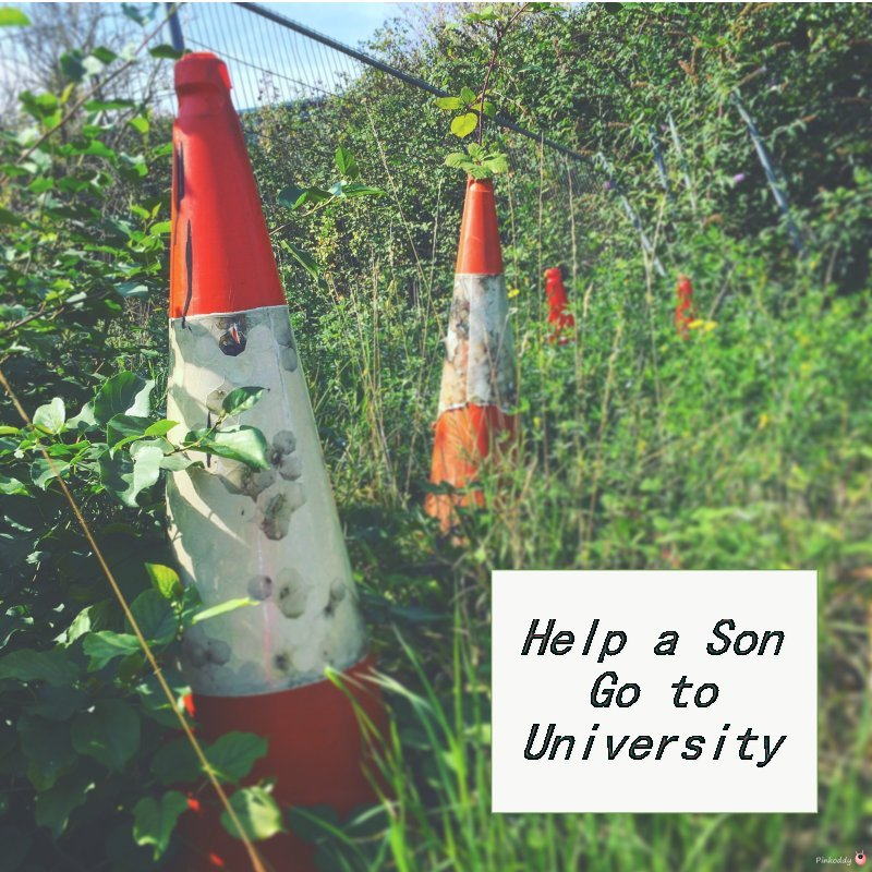 Help when a Son goes to University