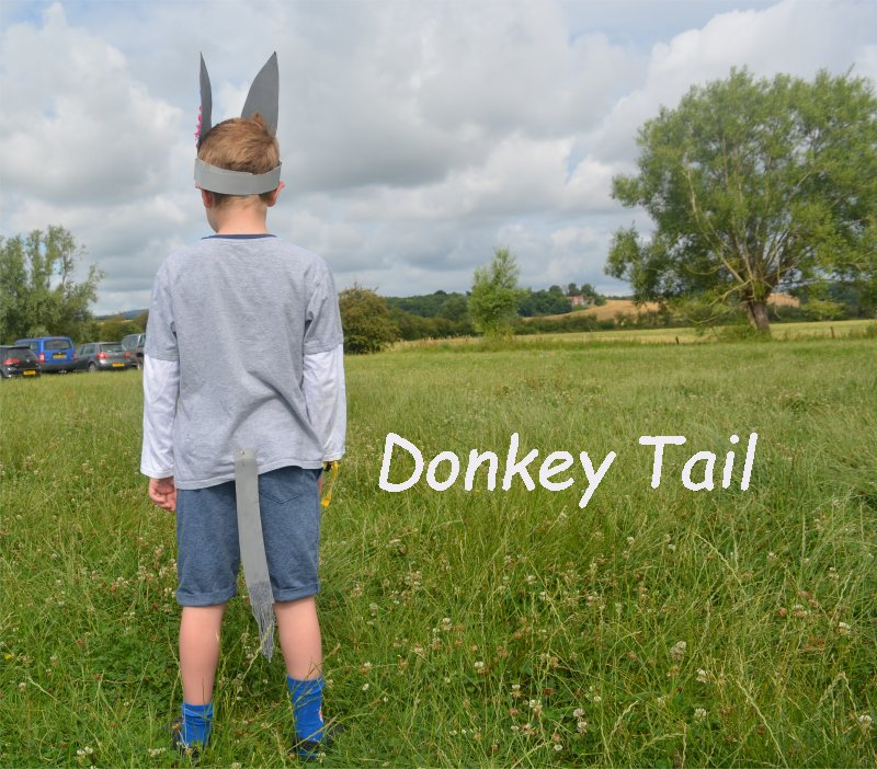 Donkey Costume – Home made, cheap and easy