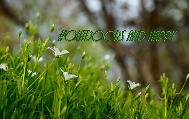 Outdoors and Happy – Why Getting Outdoors is Good for you