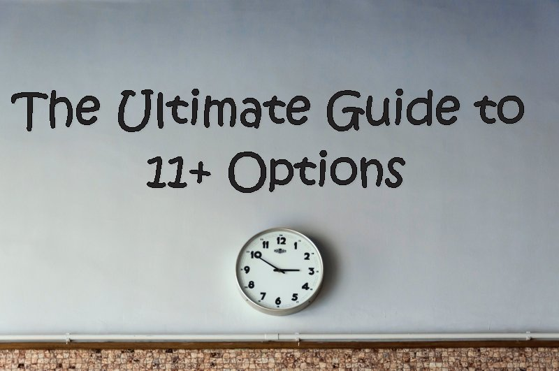 The Ultimate Guide to 11+ Options