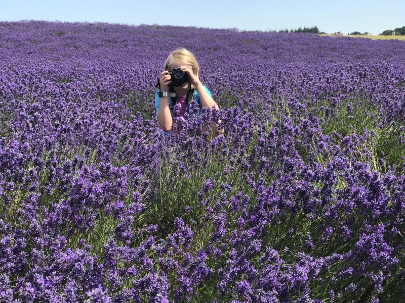 boy with camera in lavender field
