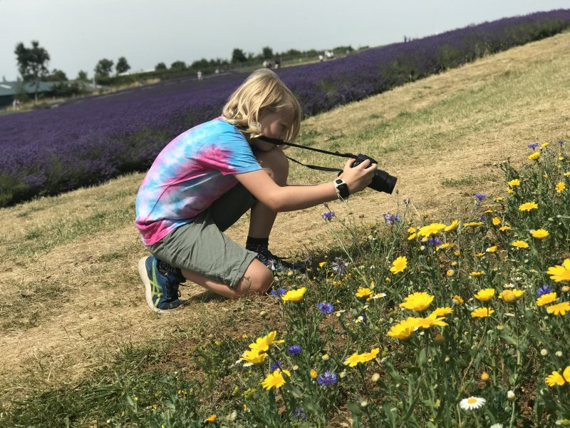 boy taking photo of flowers
