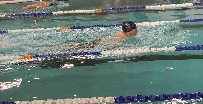 The Swimming Journey